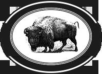 Pen and Ink Buffalo Symbol
